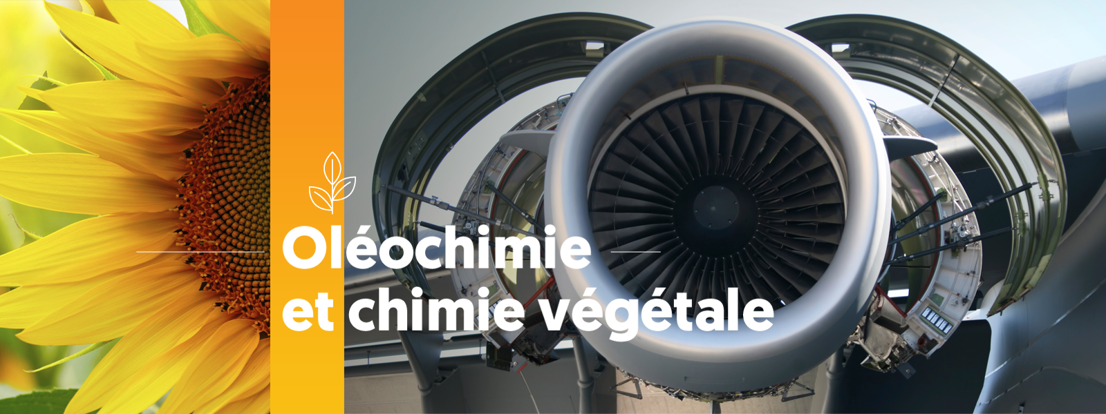 Oléochimie & chimie végétale