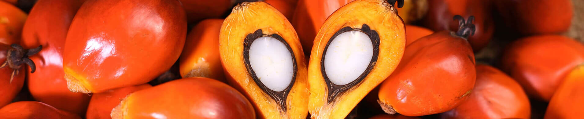 Palm kernel fatty acid